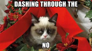 Some aspects of the festive season may leave you feeling a bit like this...